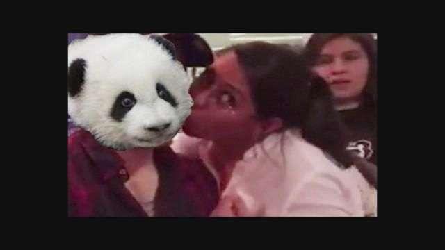 Hoy en los memes de la semana: Lady Panda, Zac Efron,  Tigres, Barça y más