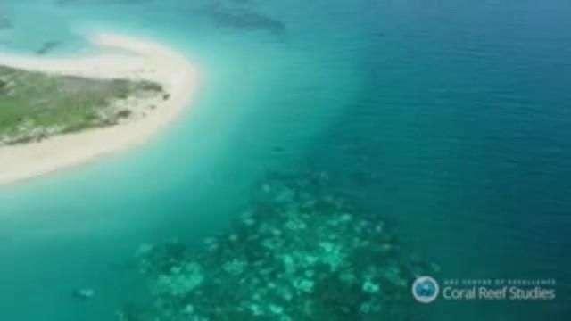 El calentamiento global amenaza al mayor sistema coralino del mundo