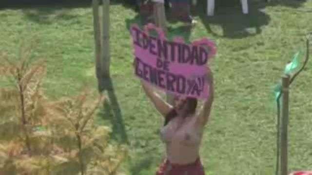 """Chile vivió jornada de picnic """"topless"""" que clama por igualdad de género"""