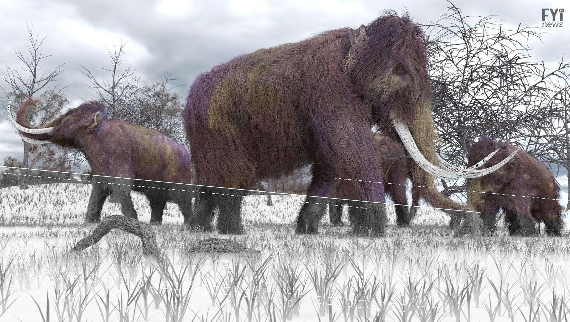 Los mammuts regresarán a la Tierra