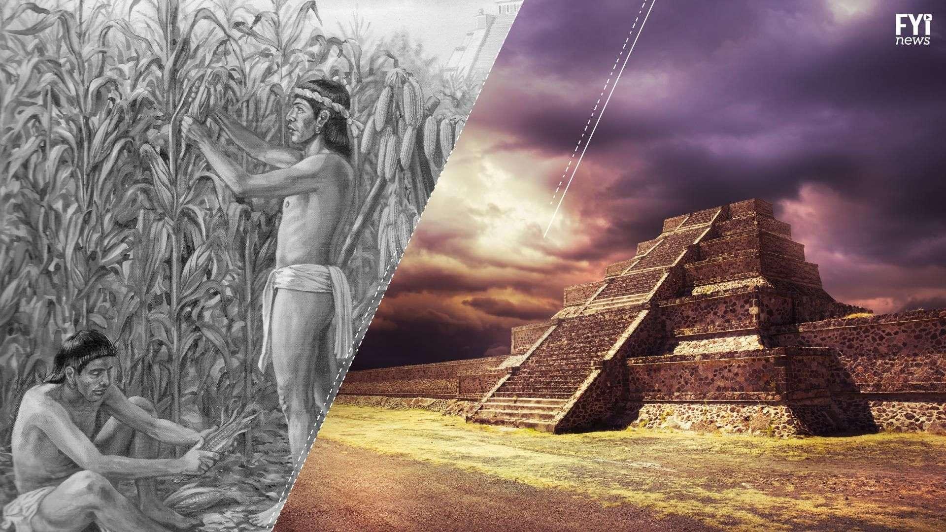 Una segunda oportunidad para los cultivos mexicanos