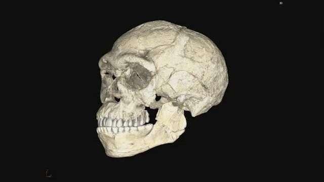 El Homo sapiens tiene cien mil años más de lo que se pensaba