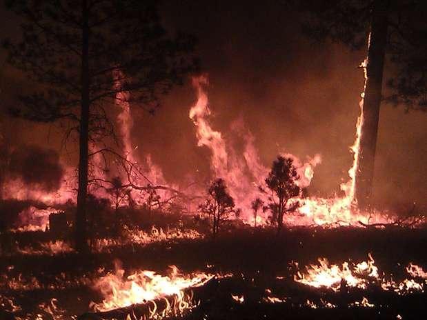 Esta imagen del martes 29 de mayo de 2012 proporcionada por el Servicio Forestal de Estados Unidos muestra un incendio en Bosque Nacional Gila, en Cliff, Nuevo México. El incendio masivo que ha quemado más de 686 kilómetros cuadrados (265 millas cuadradasa) del bosque se ha convertido en el más grande en la historia de Nuevo México, confirmaron el miércoles 30 de mayo funcionarios contra incendios. Foto: Servicio Forestal de Estados Unidos / AP