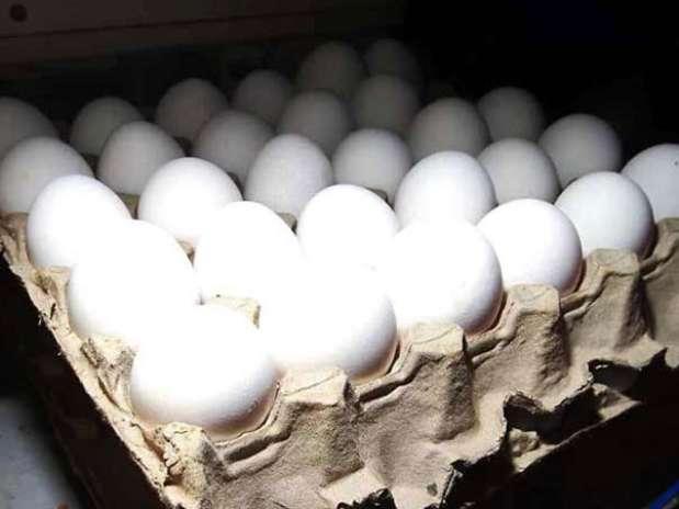 El decreto de importación de productos y subproductos avícolas mexicanos fue emitido este jueves e implementado en primeras horas de este viernes.