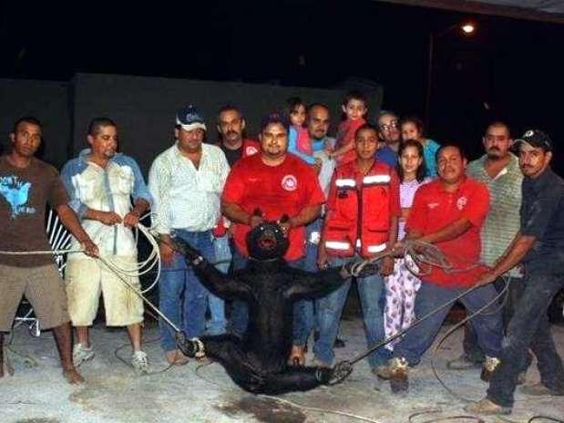 Tortura osa Foto: Agencia Reforma