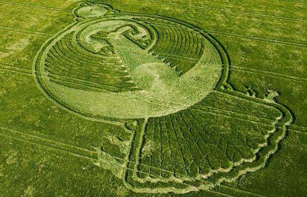 En 2009 apareció una figura de 121 metros en la pequeña villa inglesa de Yatesburyse con la mítica forma del ave fénix que renace de las cenizas. Algunos investigadores creen que se trata de una señal del fin de mundo, según el Calendario Maya.   Foto: telegraph.co.uk