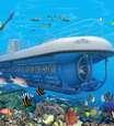 Submarino turístico explora vida marinha caribenha