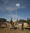 Em meio à crise argentina, Exposición Rural mantém tradição