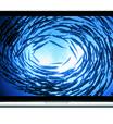 Carregar celular direto estraga bateria; veja 7 mitos