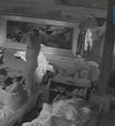 Felipeh Campos fica pelado no quarto e câmera flagra