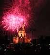 Trintão na Disney: 'jacarés' em parque aquático e adrenalina