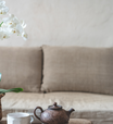Atraia amor e felicidade em sua casa com 7 plantas específicas