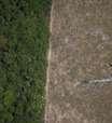 Alta de CO2 na Amazônia pode ter grande impacto nas chuvas