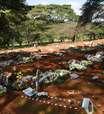 Brasil atinge marca de 430 mil vítimas na pandemia de covid