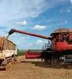 Vendas de soja da safra 2021/22 em Mato Grosso chegam a 27,7%, diz Imea