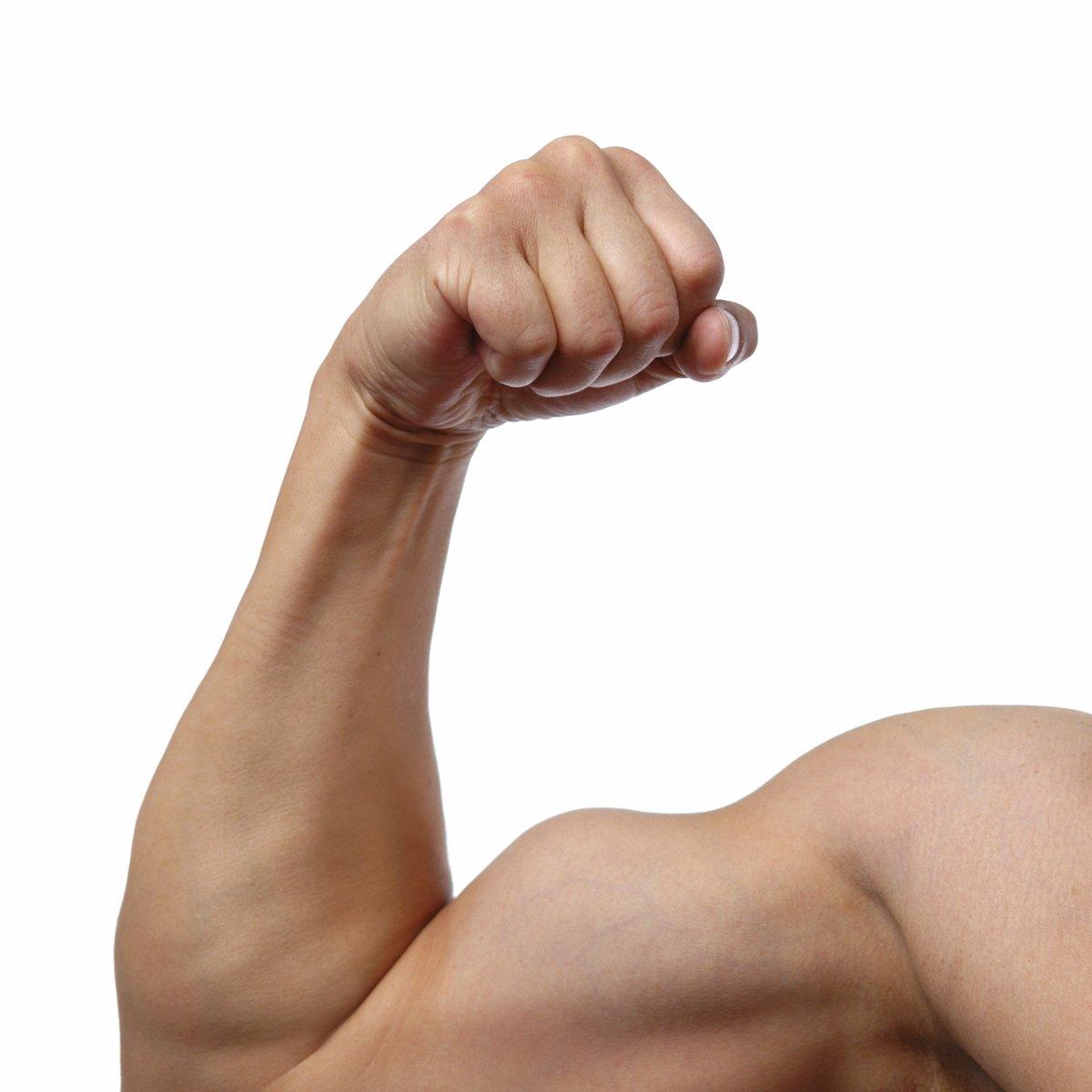 Resultado de imagem para Empresas fortes com braço forte