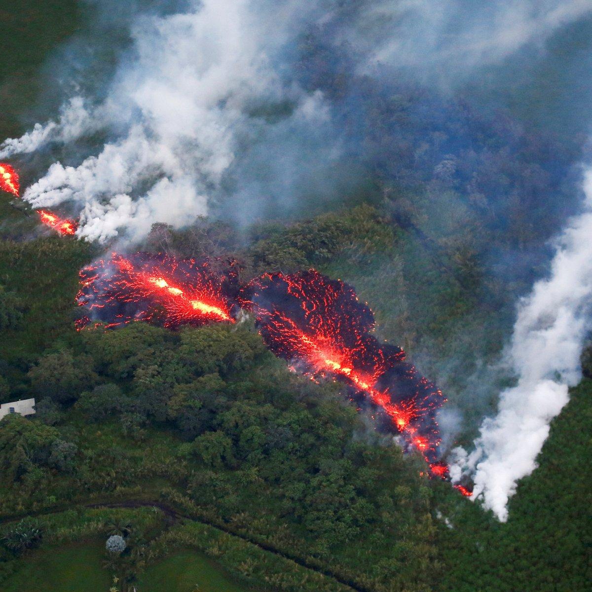 erupção nas pernas de voar