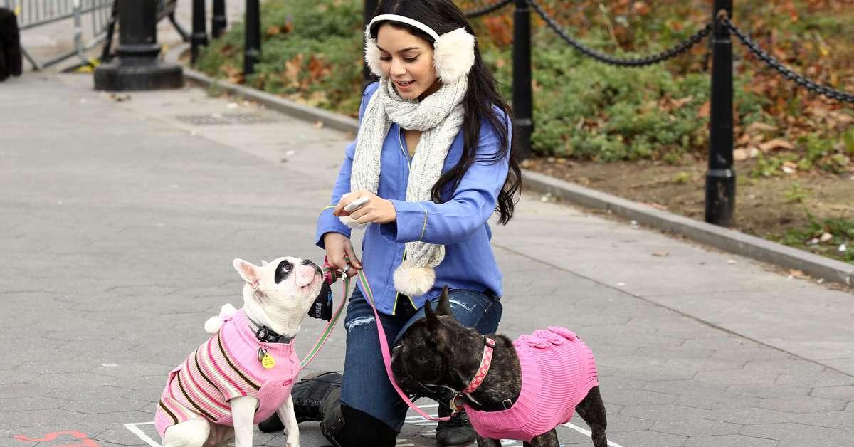 Vanessa Hudgens se diverte com cachorros no Central Park