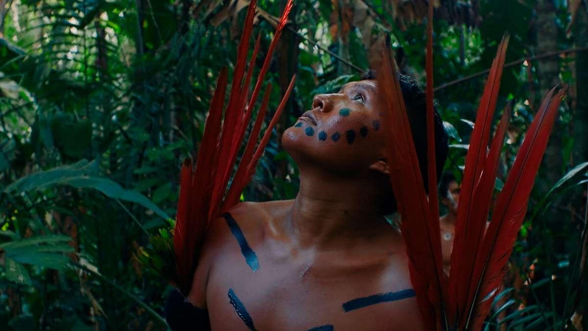 Documentário brasileiro 'A Última Floresta' ganha prêmio do público no Festival de Berlim