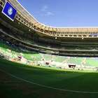 Palmeiras entra em ranking de empresas de maior faturamento