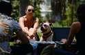 29 de junho - Captain, uma mistura de boxer e pitbull, usa óculos de sol em Los Angeles. As sombras dos parques da cidade viraram refúgio de quem tenta fugir das altas temperaturas