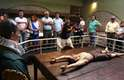 O Museu da Inquisição, em Lima, recria as torturas usadas pelo tribunal do Santo Ofício no período colonial. Museu mais visitado do Peru, recebe quase 232 mil pessoas por ano