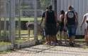Torcedores corintianos invadem CT depois de cortarem cerca de proteção