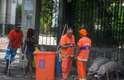 7 de março - Porcos remexem no lixo acumulado em São Cristóvão durante paralisação dos garis do Rio de Janeiro, em greve desde sábado
