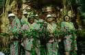 Relembre como foi o desfile da campeã Mangueira