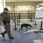 Aeropuerto de Bulgaria en alerta por amenaza de bomba