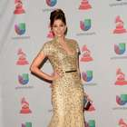 Latin Grammy: Lourdes Stephen luce vestido de 30 mil dólares