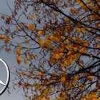 Fiscalía alemana investiga a Daimler sobre emisiones