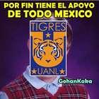 Los mejores memes del empate entre Tigres y River Plate