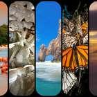 Vota: Las 7 maravillas naturales de México que debes conocer