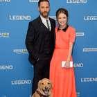 Tom Hardy lleva a su perro a la premiere de su nueva cinta