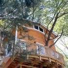 Anciano construye casa de tres pisos en un árbol