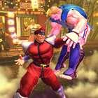 Relembre a história de 'Street Fighter'