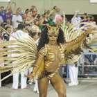 Veja fotos do desfile que consagrou Mangueira campeã
