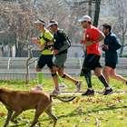 Qué comer antes de la maratón, según distancia a correr