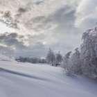 Un supuesto 'hombre de las nieves' siembra el pánico en ...