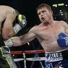 Alvarez sufre lesión en pulgar y no peleará más este año