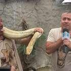 Dr. Vet: Mathias Brivio pondrá de cabeza el Zoo Huachipa