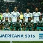 Atlético pide declarar a Chapecoense campeón de Copa ...