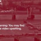 Vídeo: El atentado de Londres y la mujer que saltó al ...