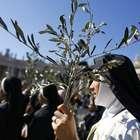 ¿Qué se celebra el Domingo de Ramos?