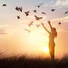 Adágios para enriquecer espiritualmente