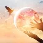 Próspero na vida! Acabe com a pobreza mental e espiritual