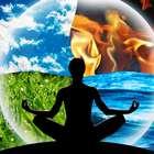 Feng Shui: energize a casa com quatro elementos da natureza