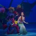 A Pequena Sereia, o Musical