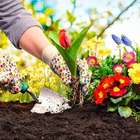 Jardinagem: Utilize Ferramentas Adequadas no Seu Paisagismo
